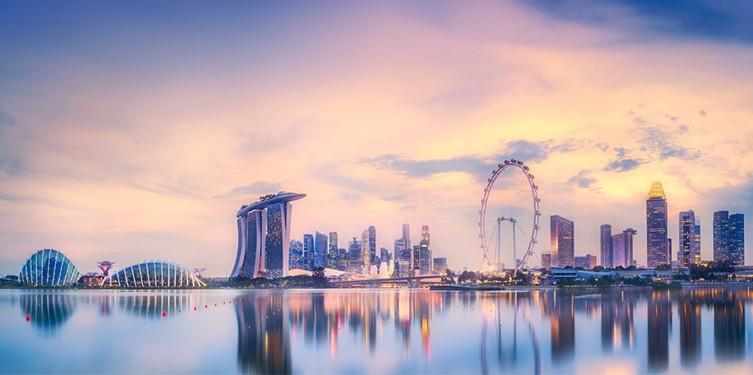 Компании в Сингапуре